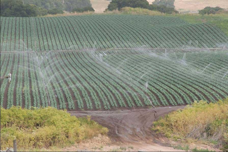 irrigation-methods