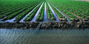 methods-of-irrigation