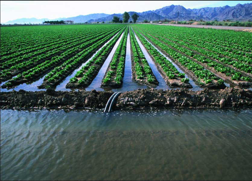 methods-of-irrigation